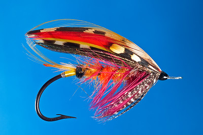 Beautiful fully dressed salmon fly by Gary Bell