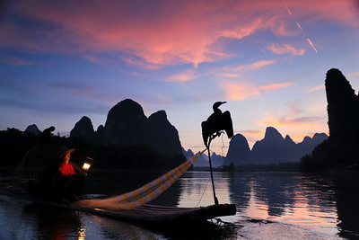 Traditional cormorant fishing