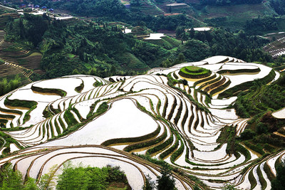 Mirror-like rice terraces at Dazhai village in May