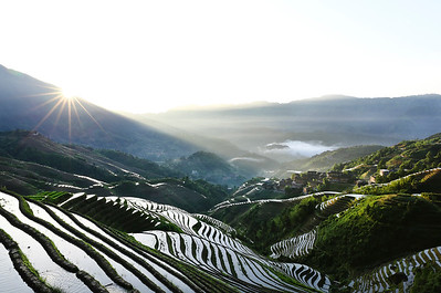 Dazhai rice terrace at sunrise