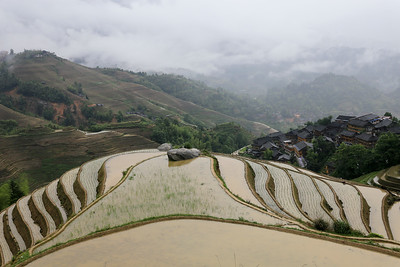 Dramatic rice terraces