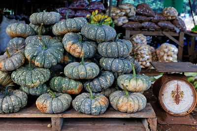 Pumpkins & Scale