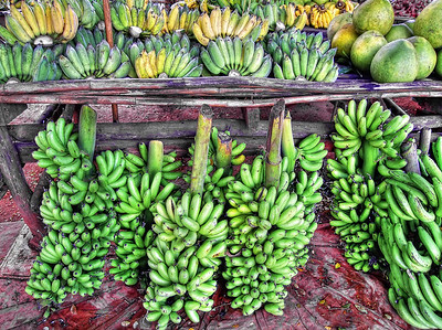 Bananas #1