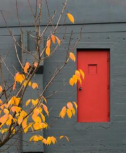 Red Door, Portland, 2015
