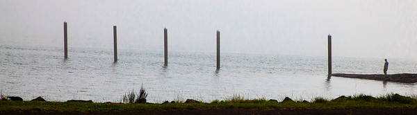 Man & Posts, Nehalem Bay, 2020
