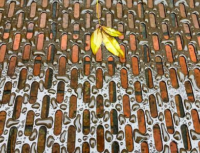 Leaves on Metal Bench in Rain, Portland, 2017