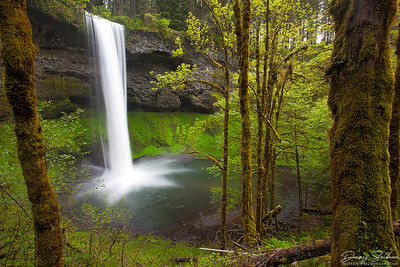 South Falls in Oregon's Silver Falls State Park.
