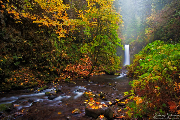 A waterfall tucked away deep in Oregon's Columbia River Gorge is adorned with colorful fall foliage.