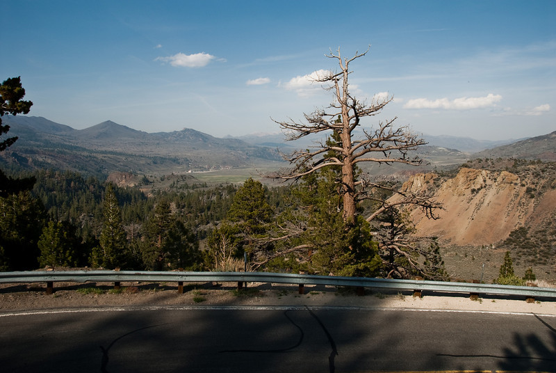 More pictures from Sonora Pass.