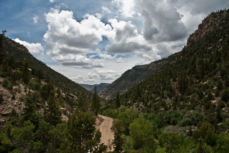 View of Joe's Valley looking down the Right Fork.