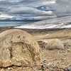 Megaspherulites<br /> Champ Island, Franz Josef Land<br /> GPS  80,37.5056N,  56,51.1337E