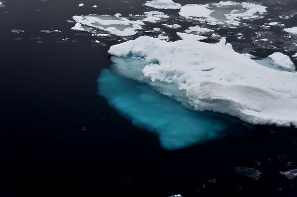 Blue polar sea ice