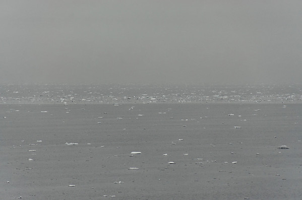 Loose pack ice, north of Rudolph Island