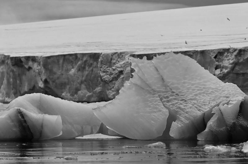 Iceberg, Cape Fligely, Rudolph Island;