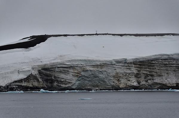 Polar bear at Cape Fligely, Rudolph Island