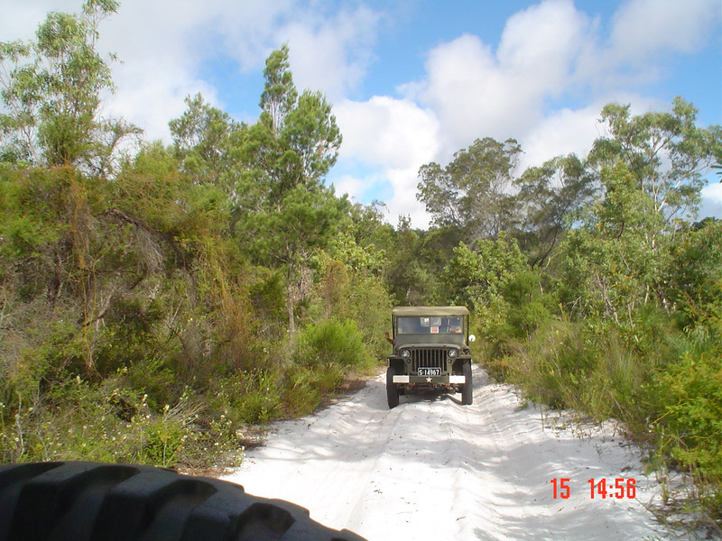 Typical low scrub and pure soft white sand tracks on the island. The jeeps fishtailed from side to side on their skinny bartread tyres Photo by J. Gordon