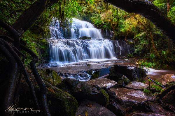 This majestic waterfall in the south of the South Island of New Zealand is picturesque from the trail that gets you to it. However, if you take a few steps off the trail you can find a couple trees ,one fallen and one falling that can frame the waterfall like this and give it an even more picturesque composition. <br /> <br /> I can still feel the soft mist in the air here and hear the rustling of the leaves that drape the walls that line the river here. Can you tell I love this place?