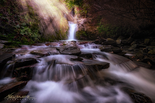 I could go on for days about the things I love about New Zealand, but one of them is the vast amount of hiking trails throughout the country. They seem to be everywhere. And they are uncrowded and remarkably gorgeous. <br /> <br /> I found this waterfall after just pulling off to the side of the road randomly to explore. Looks pretty good to me! Oh, and I don't have to worry about snakes, spiders, bears, mountain lions or anything like that. They ain't got none in NZ!
