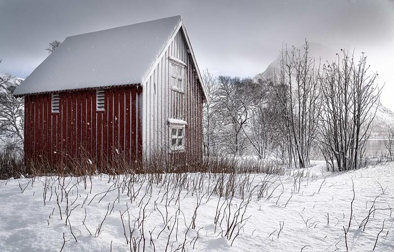 Snowy Rorbu, Senja, Norway