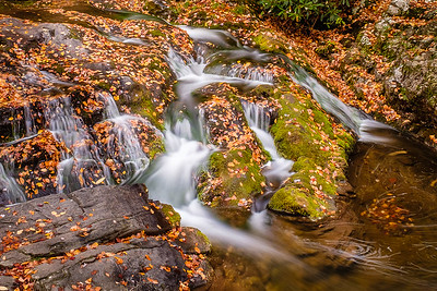 Cascading Water in Autumn