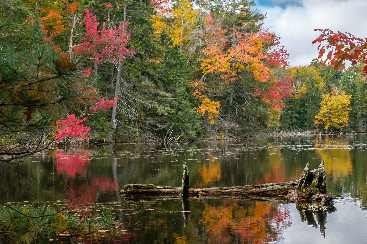 Fall Foliage and Still Lake