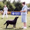 Megan at JSLRC dog show  - September 2005