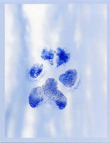 Megan's paw print.   She passed on September 22, 2015