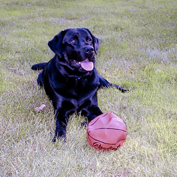 Playing with his mini basketball