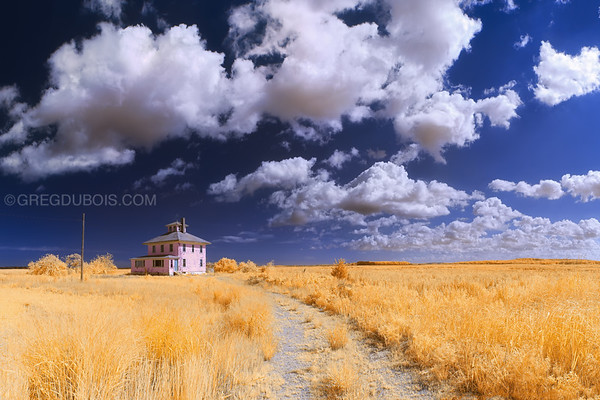 Plum Island Pink House in Infrared