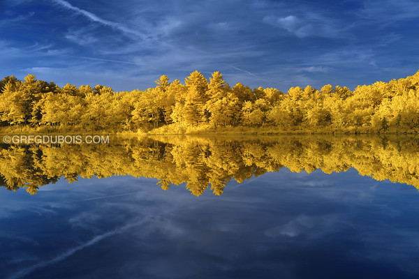 Stevens Pond Boxford Massachusetts with Mirror Reflection at Sunrise in 590 nm Infrared