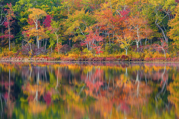 Early Fall Tree Reflections at Stevens Pond in Boxford Massachusetts