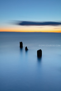 Decayed Piles at Dawn in the Boston Harbor Islands