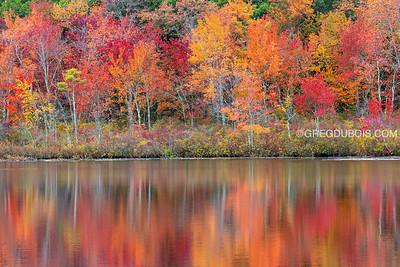 Peak Fall Tree Reflections at Stevens Pond in Boxford Massachusetts