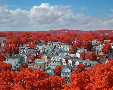 Hillside New England Town with Trees in Boston Suburbs and Kodak Aerochrome Infrared