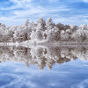 Stevens Pond Boxford Massachusetts with Mirror Reflection at Sunrise in 720 nm Infrared