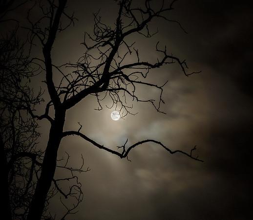 Clear Moon, Cloudy Sky