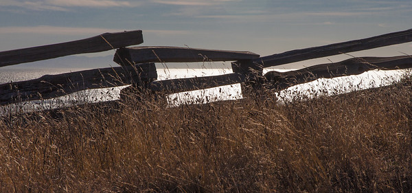 Split-Rail Fence, San Juan Island, 2020