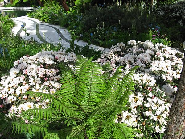 Designer Garden - IMG_0342