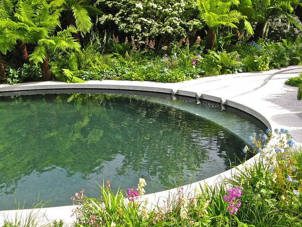 Designer Garden - IMG_0340