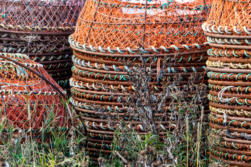 Stacks of crab nets at Tourelle harbour