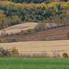 Fields near Trois Pistoles
