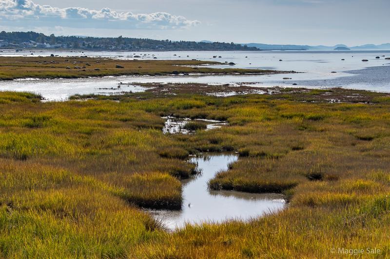 Shoreline near Pointe au Pere
