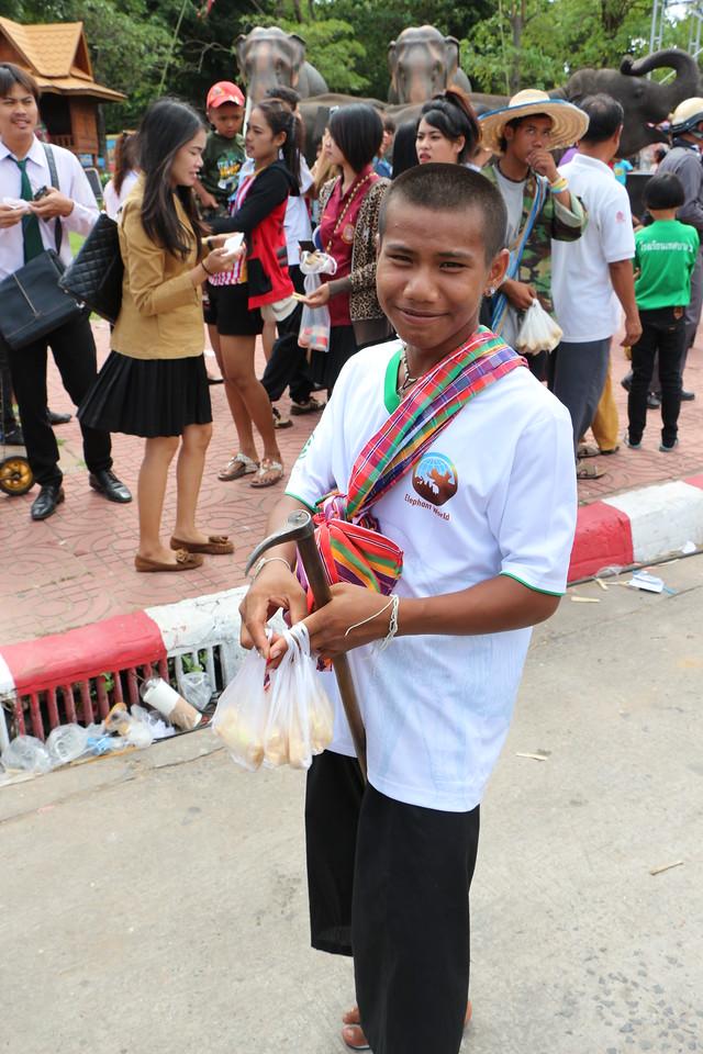2014-11-14 Surin Elephant Welcome Feast 783