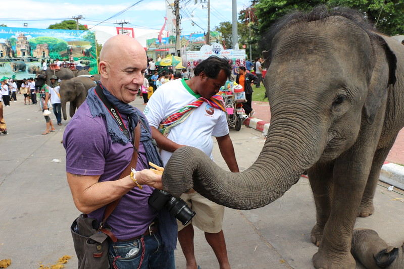 2014-11-14 Surin Elephant Welcome Feast 796