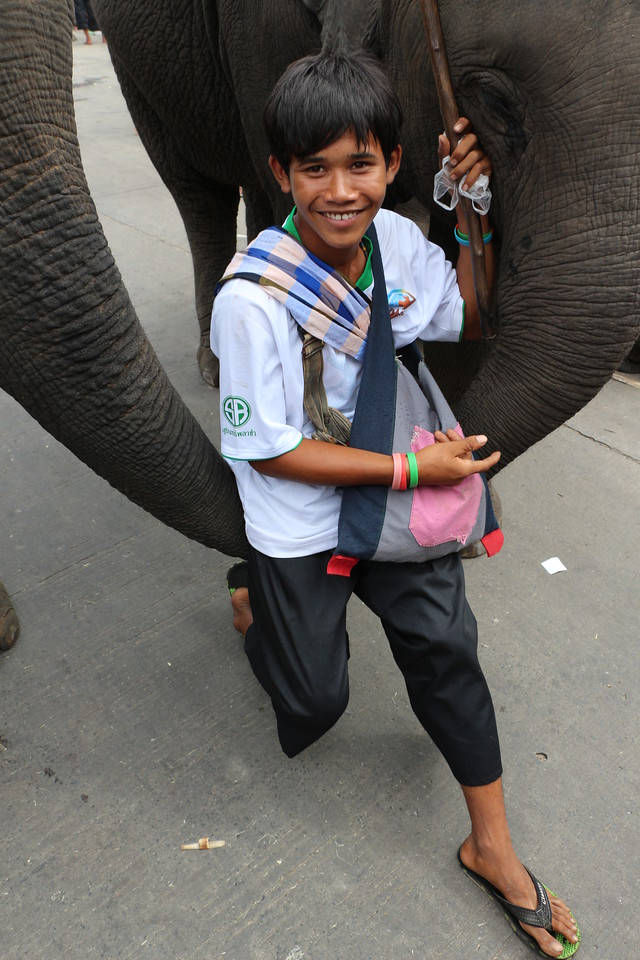 2014-11-14 Surin Elephant Welcome Feast 711