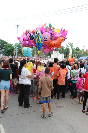 2014-11-14 Surin Elephant Welcome Feast 004