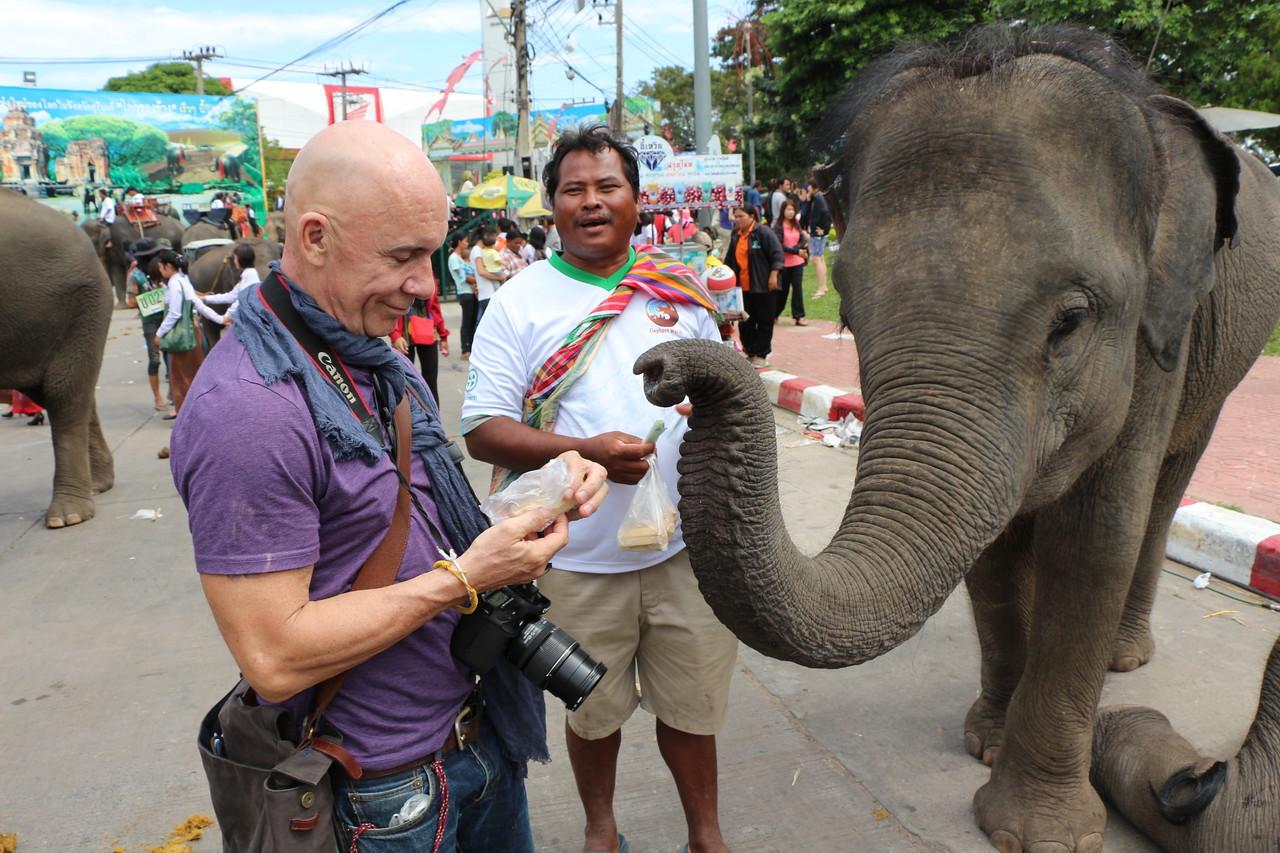 2014-11-14 Surin Elephant Welcome Feast 788