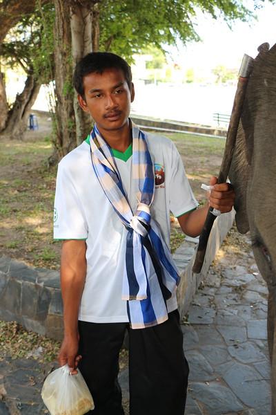 2014-11-14 Surin Elephant Welcome Feast 898.JPG