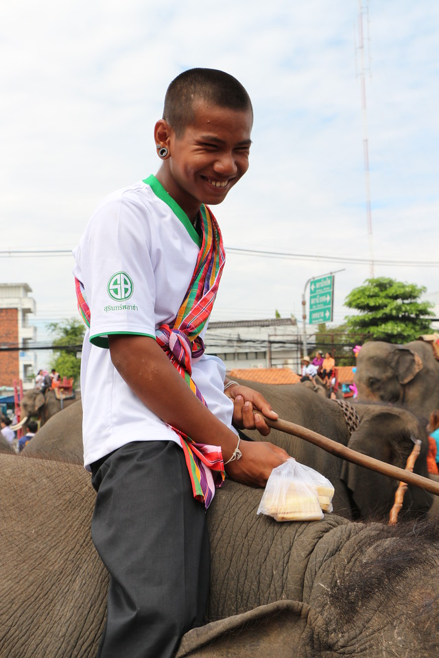 2014-11-14 Surin Elephant Welcome Feast 846
