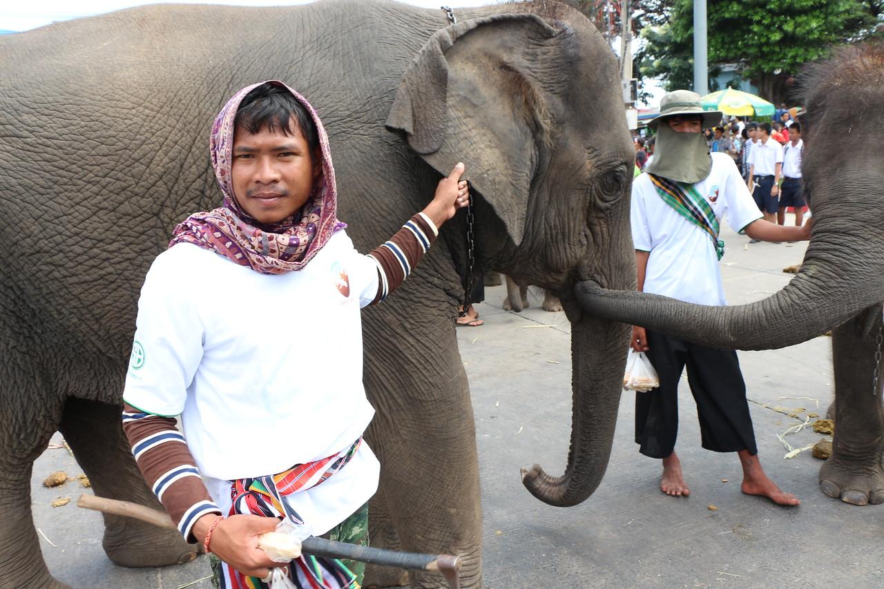 2014-11-14 Surin Elephant Welcome Feast 838